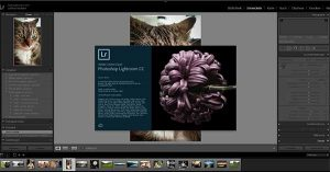 Adobe Lightroom CC2015.9