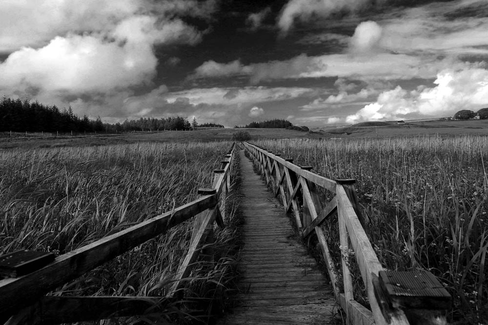 The walk by Lothar Stobbe